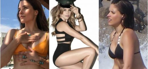 61-Sophia-Bush-Sexy-Pictures-Are-An-Appeal-For-Her-Fans-696x365